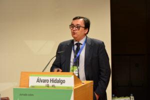 Alvaro Hidalgo